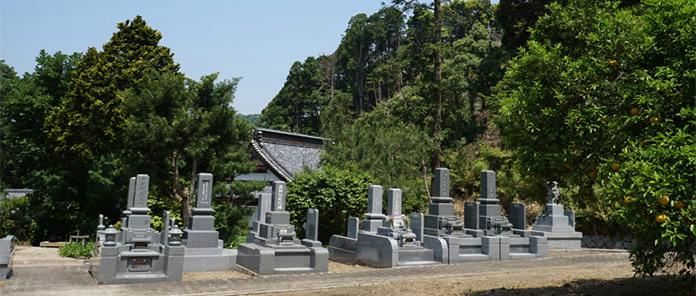 墓地から本堂屋根を眺める