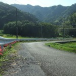 奉仕作業で植えた彼岸花が咲きました。参道奥は「仏谷」と呼ばれています。